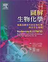 圖解生物化學(Biochemistry Illustrated, 5/e)